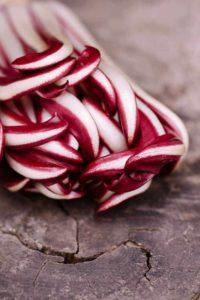 Rot-weißer Chicorée