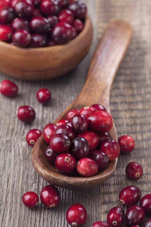 Ein Löffel voller Cranberry Früchten