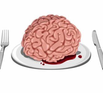 Gehirn (gezeichnet) serviert auf weißem Teller, daneben Messer und Gabel