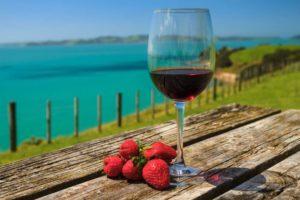 Glas Rotwein mit Beeren.
