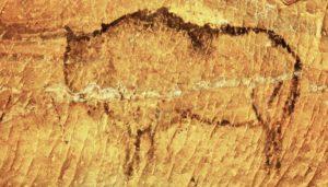 Höhlenmalerei Bison auf der Speisekarte der Paleo Diät
