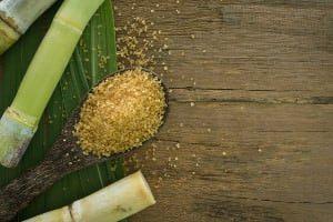Rohrzucker und Zuckerrohr
