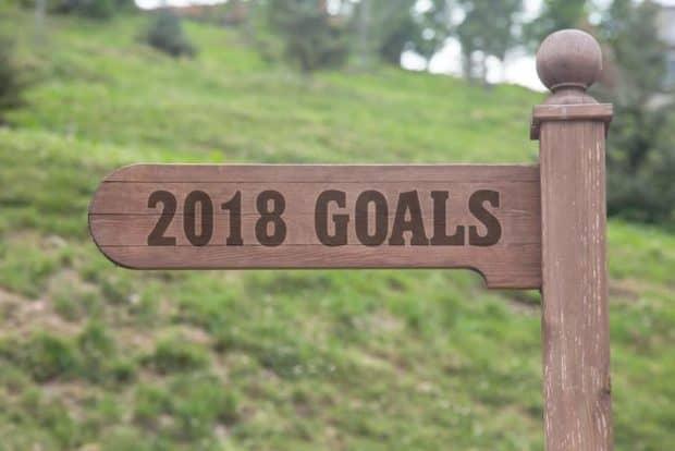 Schild aus Holz mit Aufschrift 2018 Goals vor grüner Wiese zeigt in Richtung gute Vorsätze 2018