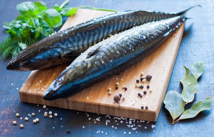 Makrele gute fette und gesunde proteine for Acheter des poissons