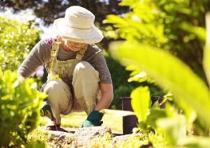 Frau arbeitet kniend im Garten