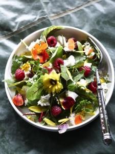 Salat aus Wildkräutern und Wildblüten